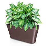 coffee plant pot - Ergo Self Watering Planter Pot - Indoors, Outdoors Planters Box, Modern Coffee Rectangular Plant Container for Windowsill - Grow Flowers, Herbs Easily, by SavvyGrow (Coffee)