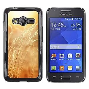 iKiki Tech / Estuche rígido - Yellow grass Crops Sun - Samsung Galaxy Ace 4 G313 SM-G313F
