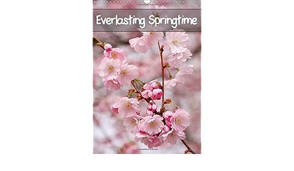 Everlasting Springtime 2018: 12 Marvellous Spring Photos (Calvendo Nature)