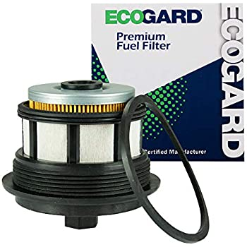 ecogard xf59292 diesel fuel filter - premium replacement fits ford f-250  super duty, f-350 super duty, excursion, e-350 super duty, e-350 econoline  club