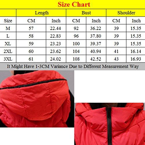 Zhhlaixing Abrigo de moda Winter Down Vest Female Korean Version of the Clip Short Style Hood Slim Fashion Red