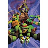 Trends International Unframed Poster Prints, Teenage Mutant Ninja Turtles Team