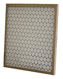 Glasfloss Industries PTA10251 PTA Series Heavy Duty Disposable Panel Air Filter, 12-Case