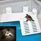 Aquarium Tank Reptile Turtle Basking Terrace Floating Platform Dock 2018cm