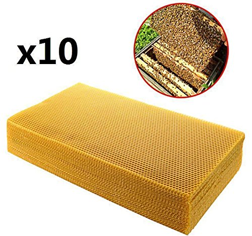 EatingBiting?R?10pcs 20cm x 41cm Sheets Natural Beeswax Candlemaking Bee Wax Honeycomb Beekeeping / Beekeeping Nest Box Nest Foundation Beeswax Honeycomb Sheets Beekeeping Raising Tools