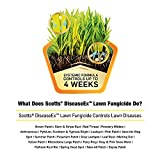 Scotts DiseaseEx Lawn Fungicide - Lawn Fungus