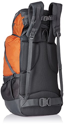Wildcraft 45 Ltrs Grey and Orange Rucksack (8903338073864) 4