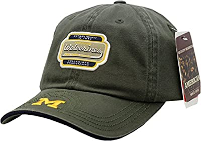 Michigan Wolverines Hat Flam Bam Adjustable from American Needle