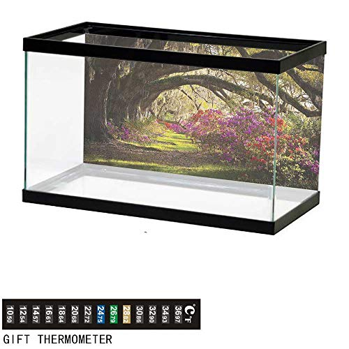 - Suchashome Fish Tank Backdrop Nature,Mystical Garden Flourishing,Aquarium Background,30