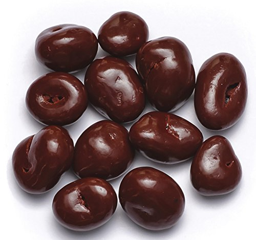 Spiced Chocolate Cranberries 1 pound chocolate dried - Candyland California