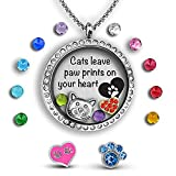 A Touch of Dazzle Cat Lover Gifts Floating Charm Necklace Cat Jewelry | Cat Lover Gifts for Women | I Love Cats in a Cat Necklace for Women | Cat Themed Gifts for Women