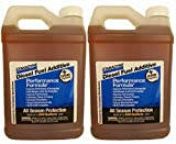 Best Diesel Fuel Additives - Stanadyne Performance Formula Diesel Fuel Additive 2 Pack Review