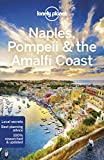 Download Lonely Planet Naples, Pompeii & the Amalfi Coast (Travel Guide) in PDF ePUB Free Online