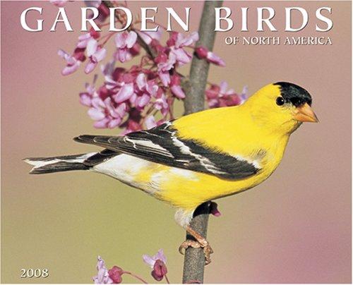 (Garden Birds 2008 Calendar)