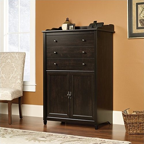 Sauder Edge Water Smartcenter Secretary, Estate Black finish (Armoire Small Computer)