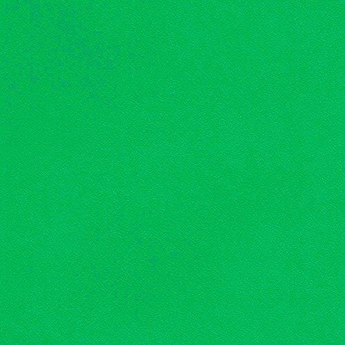 シンコール  壁紙29m  ビニル  黄緑色  SW-2488 B075BHDSR6 29m|黄緑色3