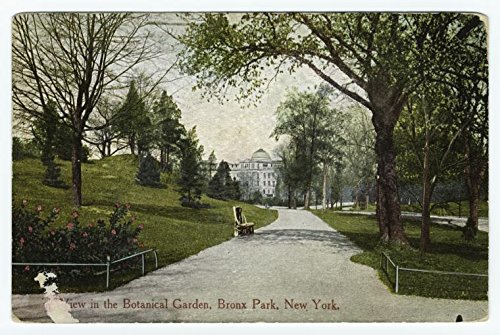 Historic Pictoric Print - View in the Botanical Garden, Bronx Park, New York, 1912 - Vintage Wall Art - 12in x 8in