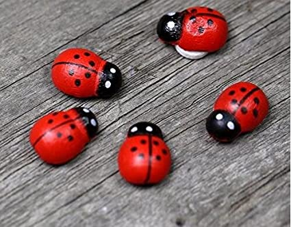 """1019 Stick-on Wooden Craft Pieces 10mm Pkg of 25 Small RED LADYBUG 3//8/"""""""