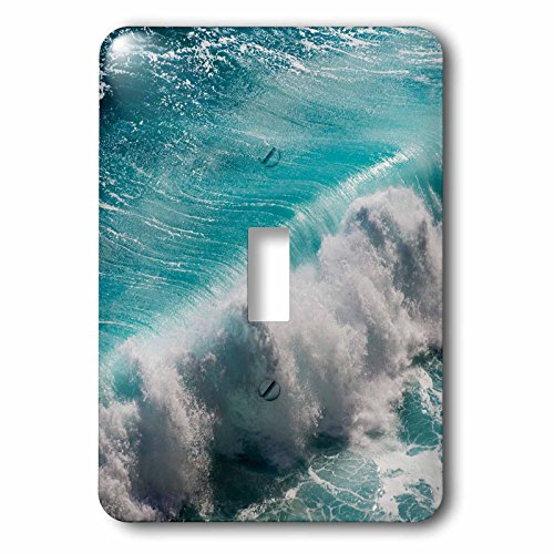 Danita Delimont - Oceans - Ocean waves, Bali island, Indonesia - Light Switch Covers - single toggle switch (lsp_225819_1) by 3dRose