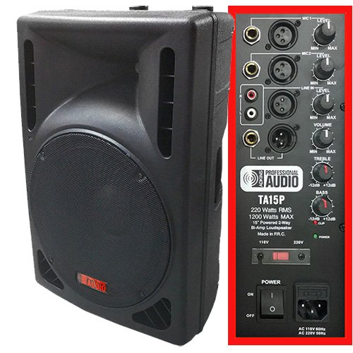 1200 Watt Powered DJ Speaker - 15-inch - Bi-Amp 2-Way Active Speaker System by Adkins Pro Audio - TA15P Adkins Professional Audio TA15P-ca
