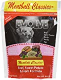 Evolve 00977 Grain Free Salmon Jerky Dog Treat, Large