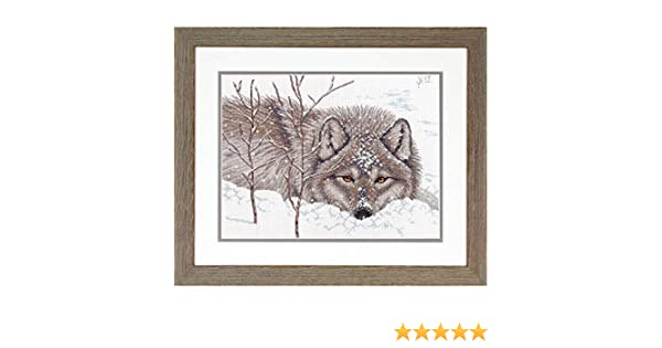 14 x 14 Dimensions 70-35377 Wolf in Snow Cross Stitch Kit 14 Count White Aida Cloth