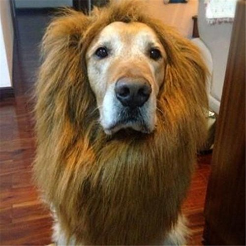 Pet Wigs Costume Dog Lion Mane Hair Festival Party Fancy Dress Halloween Costume Pet Lion Hair Pet Hair Accessories