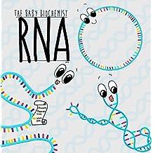 The Baby Biochemist: RNA