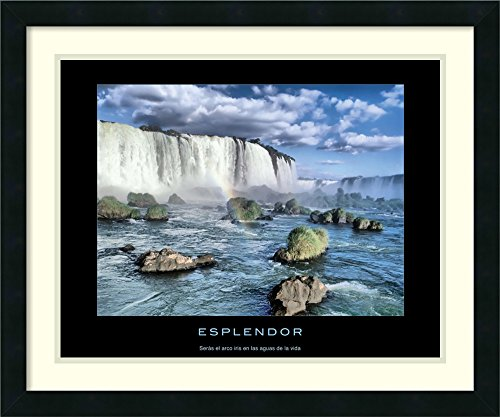 Framed Art Print 'Esplendor' by Amanti Art