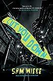 Cut You Down (A PI Dave Wakeland Novel (2))