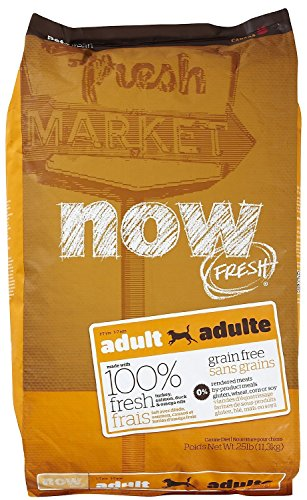 Now! Dry Dog Food, Grain Free Turkey and Duck Formula, Adult, 25-Pound Bag