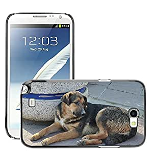 Just Phone Cover Etui Housse Coque de Protection Cover Rigide pour // M00140165 Perro Animal perrito de Labrador Marrón // Samsung Galaxy Note 2 II N7100