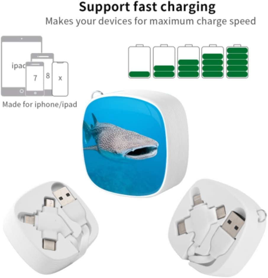 Mini USB Cable Philippine Whale Shark Multi 3 in 1 Retractable Multi Connection Charging Cable with Micro USB//Type C Compatible with Cell Phones Tablets and More