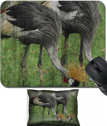 MSD Mouse Wrist Rest and Small Mousepad Set, 2pc Wrist Support design 35315966 Grey Crown Crane Mural The cement painting concept (Crown Crane)