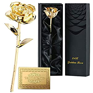 7Queen Valentines Gifts for Women, Long Stem Dipped 24k Gold Rose in Gift Box with Clear Display Stand Best Gift for Mothers/Anniversary/Birthday/Galentine's Gift and Treating Yourself (24k Gold) 1