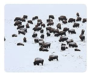 Bison In Hayden Valley Mouse Pad Desktop Mousepad Laptop Mousepads Comfortable Computer Mouse Mat Cute Gaming Mouse pad