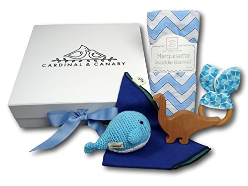 Classic Baby Gift Box in Blue by Cardinal and Canary