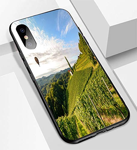 iPhone X/XS Ultra-Thin Glass Back Phone case,Vineyards with hot air Balloon Near a Winery Before Harvest in The Tuscany Wine Growing Area Italy Soft and Easy to Protect The Protective case