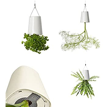 Plastic Hanging Planter Plant Pots   Tchan Upside Down Sky Flower Pot For  Home Indoor Outdoor