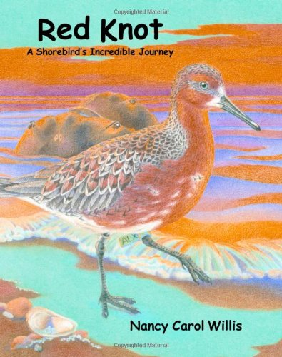 Download Red Knot: A Shorebird's Incredible Journey pdf
