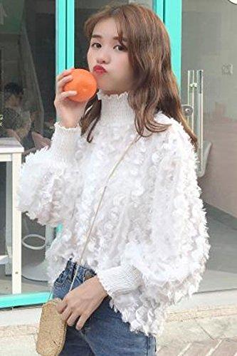 834750c5cc6c6 Amazon.com   Korean high collar was thin loose long-sleeved pullover  feather tassels chiffon shirt shirt female for women girl   Beauty