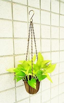 Blumentopf Hangend Messing Amazon De Garten