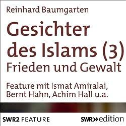 Frieden und Gewalt (Gesichter des Islams 3)