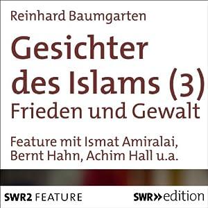 Frieden und Gewalt (Gesichter des Islams 3) Hörbuch