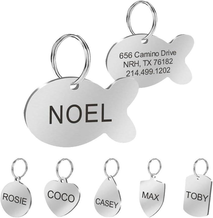 Placas Berry de identificación personalizadas de acero inoxidable para mascotas: Amazon.es: Productos para mascotas