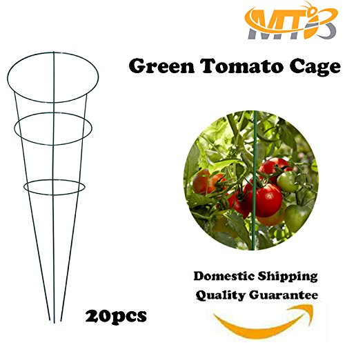 MTB Green Tomato and Plant Support Cage 33 inch, Pack of (Cheap Tomato Cages)
