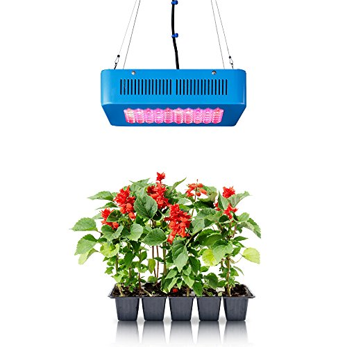 Latest Led Grow Lights in US - 8