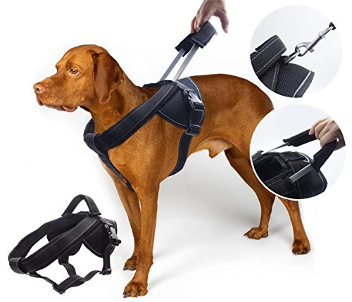 YOGADOG - Heavy Duty Dog Harness