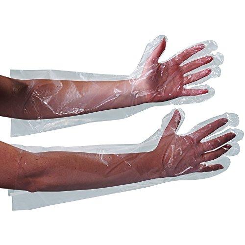 Poly Clear Gloves - Aviditi GLV2221 Clear Poly Gloves, 18