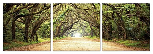 QICAI Modern Canvas Wall Art painting for home decor 3 Panels Path of Enchantment green trees road landscape the picture Print On Canvas For Home Decor,ready to hang